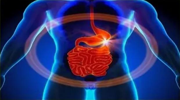 Научно - практическая конференция  «Cовременные подходы к диагностике и лечению предрака и рака пищеварительной системы»